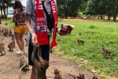 Avanti overal Ayutthaya Thailand Siebe Van Langenhove
